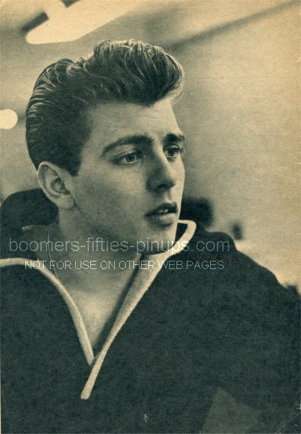 © boomers pinups work product - fabian forte in 1959 fashion sweater