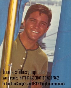 paul petersen from the donna reed show